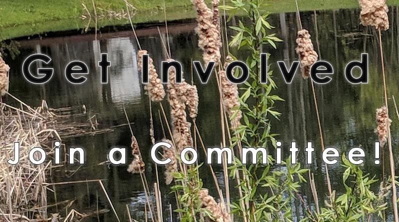 hawk mountain pittsfield vt association committees