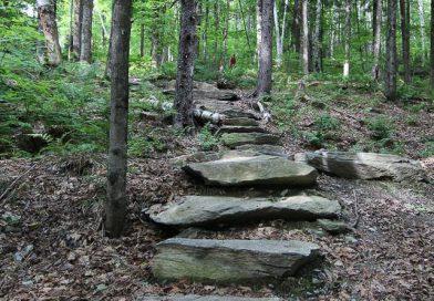 Best Hiking Trails Near Pittsfield Vermont